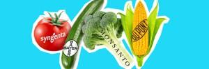 Monsanto-Patente auf Leben stoppen